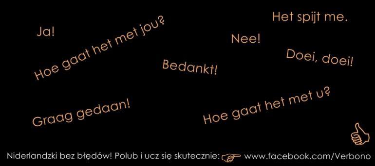 niderlandzki podstawowe zwroty