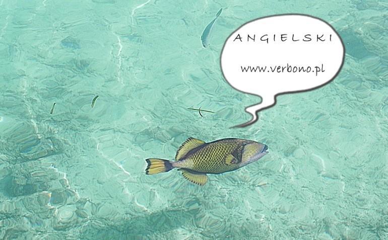 ryba po angielsku