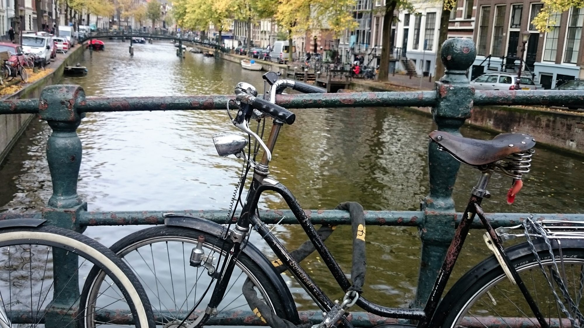 kurs niderlandzkiego podstawy rozszerzone